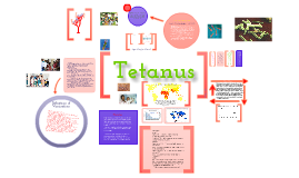 Copy of Tetanus Case Study
