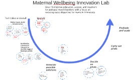 Maternal Wellbeing Innovation Lab: Project Activities