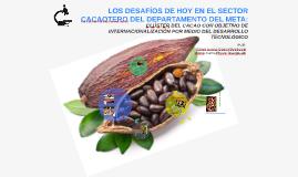 LOS DESAFÍOS DE HOY EN EL SECTOR CACAOTERO DEL DEPARTAMENTO