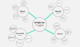 Gun Rights Laws