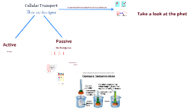 Copy of Hypertonic/Hypotonic/Isotonic