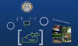 Pitt Website