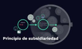 Principio de subsidiariedad