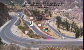 Copy of  Normas de seguridad peatonal en las vías públicas de la lo