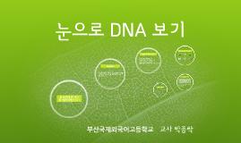 눈으로 DNA 보기(공개수업용)