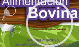 Sistema digestivo y sistemas de pastoreo