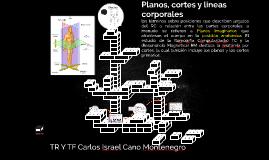 Planos, cortes y lineas corporales