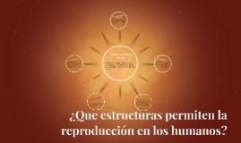 ¿Que estructuras permiten la reproducción en los humanos?
