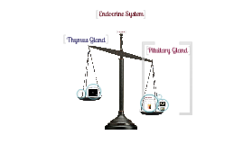 Endocrine presentation