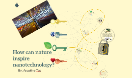 How can nature inspire nanotechnology?
