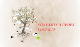 CONEXION A REDES SOCIALES