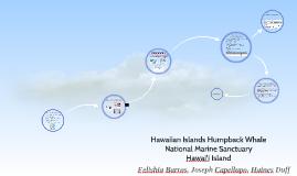 Hawaiian Islands Humpback Whale National Marine Sanctuary –