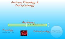 Anatomy, Physiology, & Pathophysiology