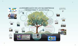 Copy of CONTAMINACIÓN DE LOS ECOSISTEMAS TERRESTRES Y ACUÁTICOS