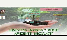 L.INVERSA CAUSAS Y FLUJOS
