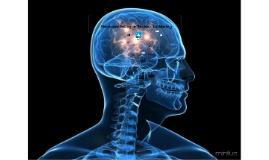Copy of Neuromarketing , motivações incosncientes e irracionais