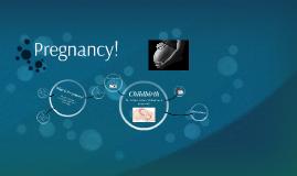 Pregnancy!