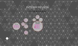 INTERIM REVIEW