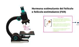 Hormona estimulante del folículo o folículo-estimulante (FSH