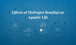 Effects of Hydrogen Bonding on Aquatic Life.