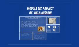Module six project