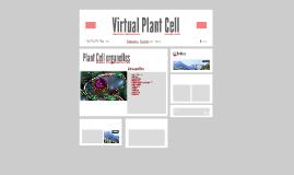 Virtual Plant Cell