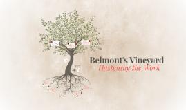 Belmont's Vineyard: