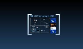 AIESEC Structure 2011