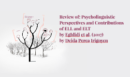 Review of: Psycholinguistic Perspectives and Contributions o