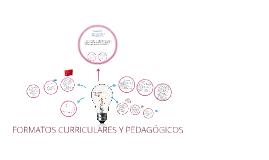FORMATOS PEDAGÓGICOS - CURRICULARES