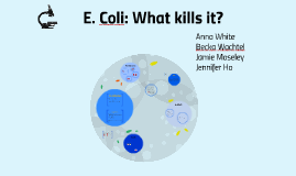 E. Coli: What kills it?