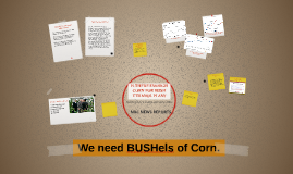 Is there enough corn for Bush ethanol plan?