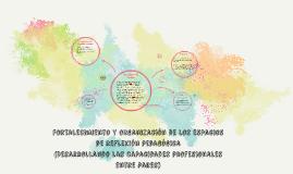 Copy of Reflexión didáctica entre pares