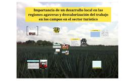 Importancia de un desarrollo local en las regiones agaveras