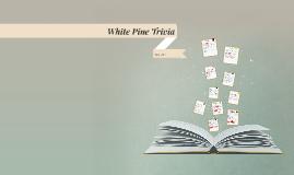 White Pine Trivia