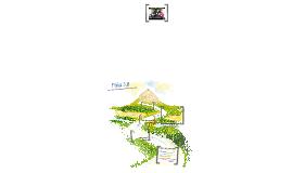 Copy of Piña 3.0