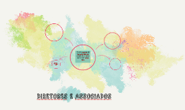DIRETORES E ASSOCIADOS