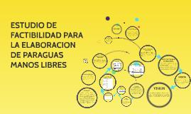 Copy of ESTUDIO DE FACTIBILIDAD PARA LA ELABORACION DE PARAGUAS MANO