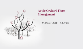 Apple Orchard Floor Management
