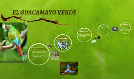 EL GUACAMAYO VERDE