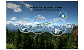 Education at the Junior Division