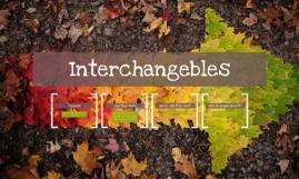 Interchangebles