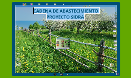 Copy of 3D  PROYECTO SIDRA