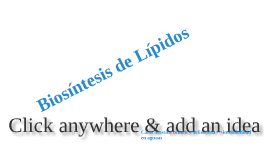 Copy of biosintesis de lipidos