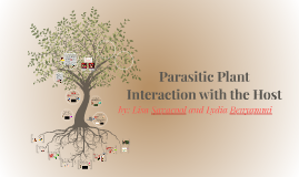 Parasitic Plant Interaction with the Host