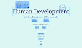 Copy of Human Development