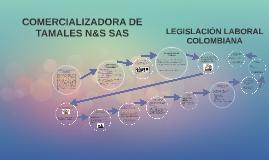 COMERCIALIZADORA DE TAMALES N&S SAS
