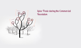 Copy of Spice Trade during the Commercial Revolution