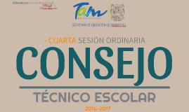 C.T.E 16-17: Cuarta sesión ordinaria