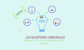 Receptores sensoriales. :)